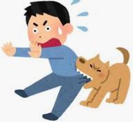 狂犬病ワクチン(ラビピュール)接種について