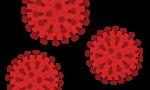 新型コロナウイルス感染症について
